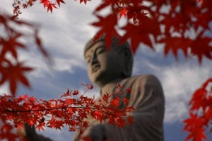 autumn-leaves-around-japanese-buddha